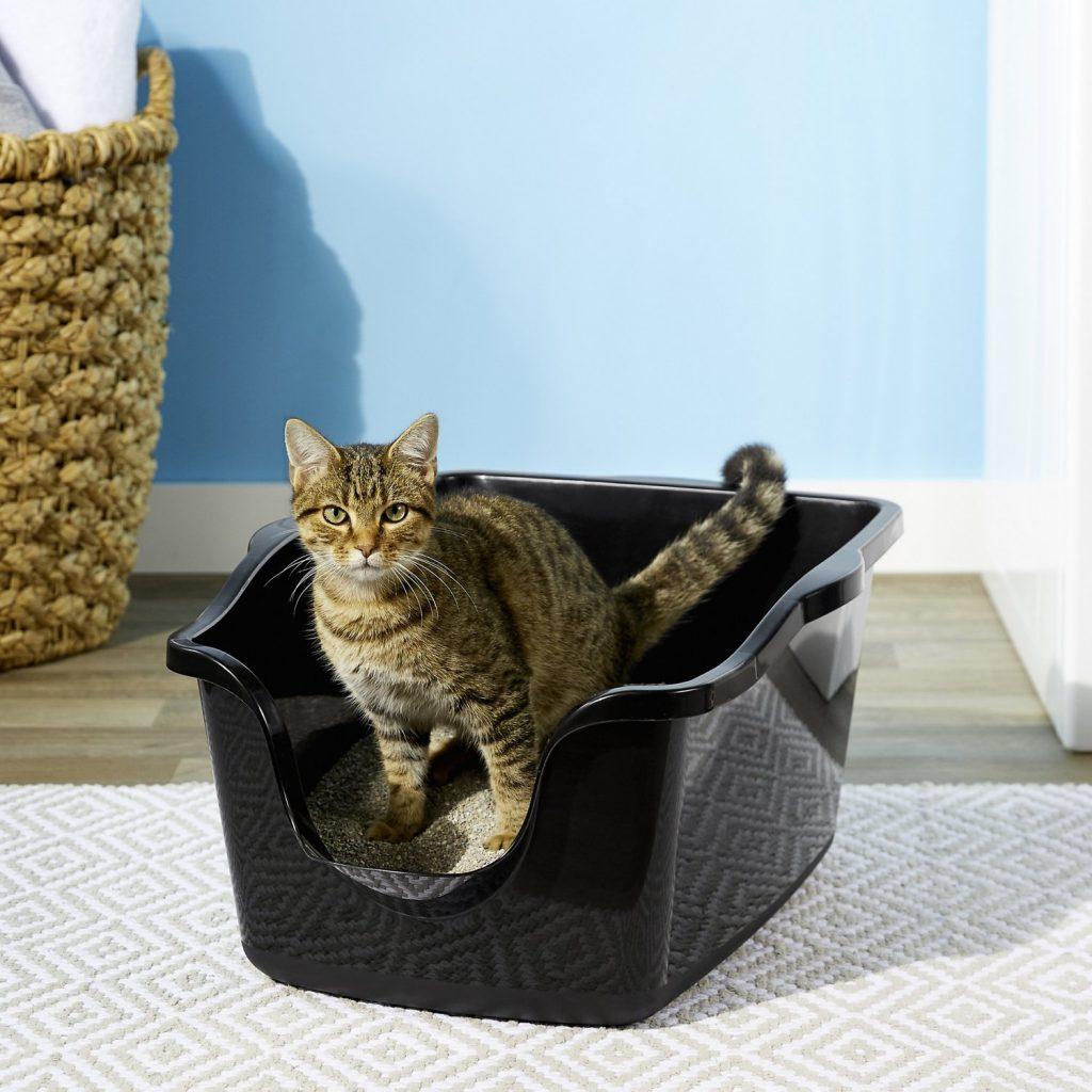 kačių kraikas - kurį rinktis